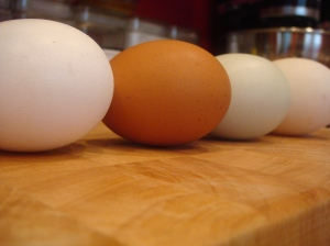 Grocery, brown chilled, non-chilled, and duck egg from left to right.