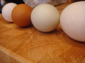 Duck egg, non-chilled, brown chilled, and grocery egg from right to left.